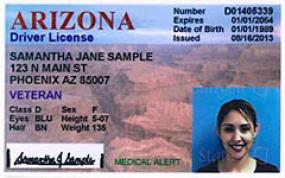 veteran-designated-driver-license-sample (1)